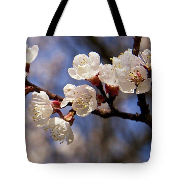 White Cherry Blossoms Tote Bag