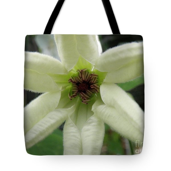 White Clematis Tote Bag by Lainie Wrightson