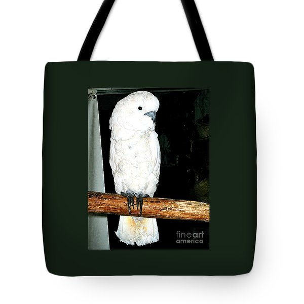 White Cockatiel-loreto Mx. Tote Bag by Jay Milo