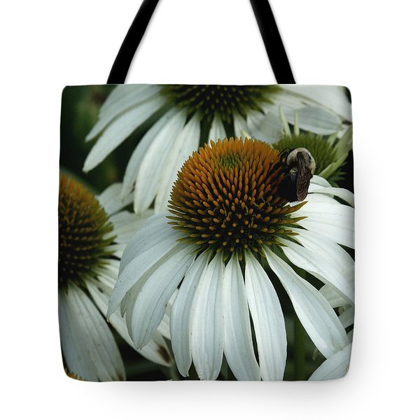 Tote Bag featuring the photograph White Coneflowers  by James C Thomas