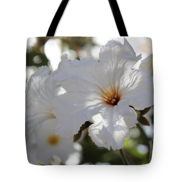 White Cordia Tote Bag by Kume Bryant