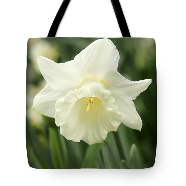 White Daffodil Flower Tote Bag by Jennie Marie Schell