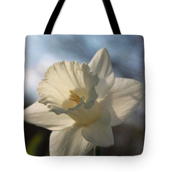 White Daffodil Tote Bag by Jennifer E Doll