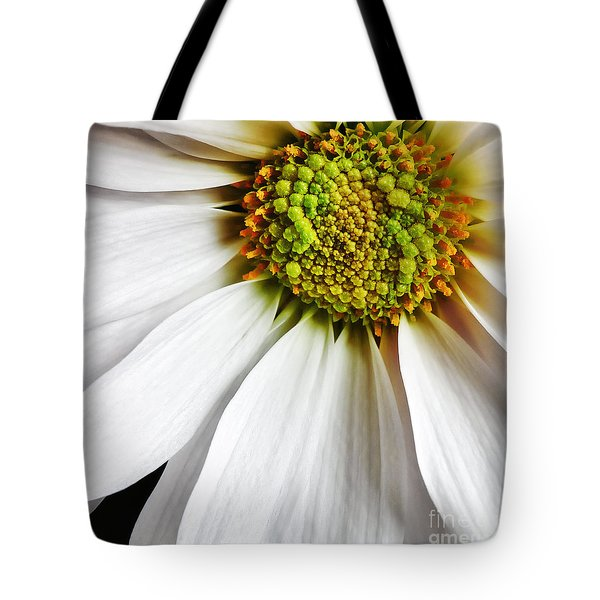 White Daisy Closeup Tote Bag by Madonna Martin