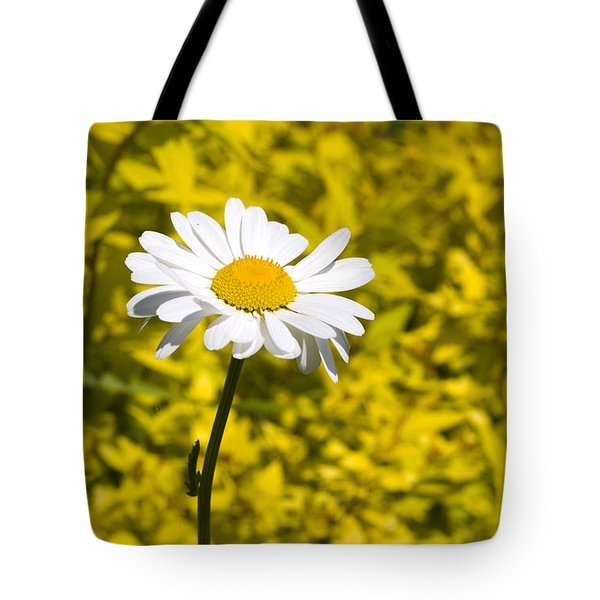 White Daisy In Yellow Garden Tote Bag