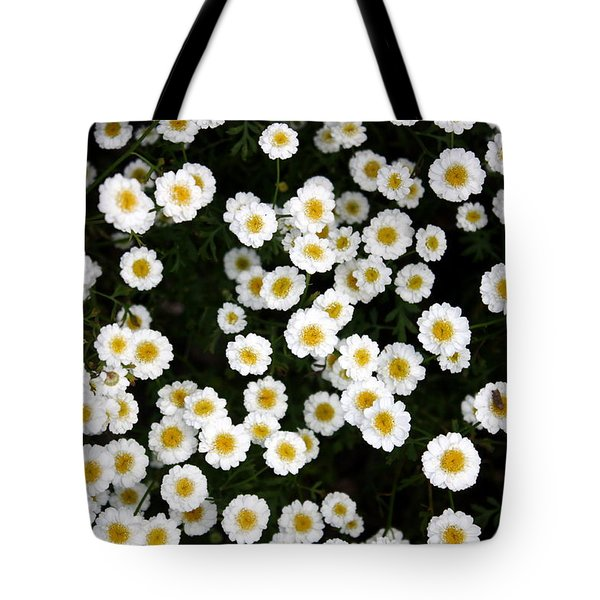 Tote Bag featuring the photograph White Daisys by Jean Walker