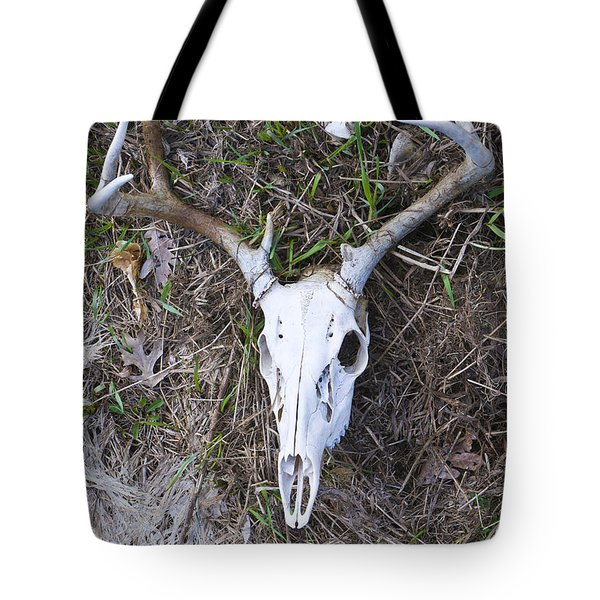 White Deer Skull In Grass Tote Bag