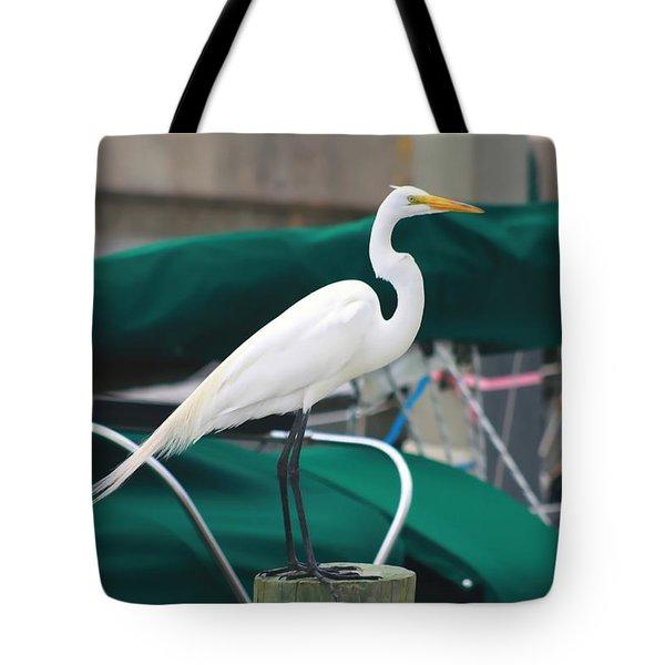 White Egret Tote Bag by Debra Forand