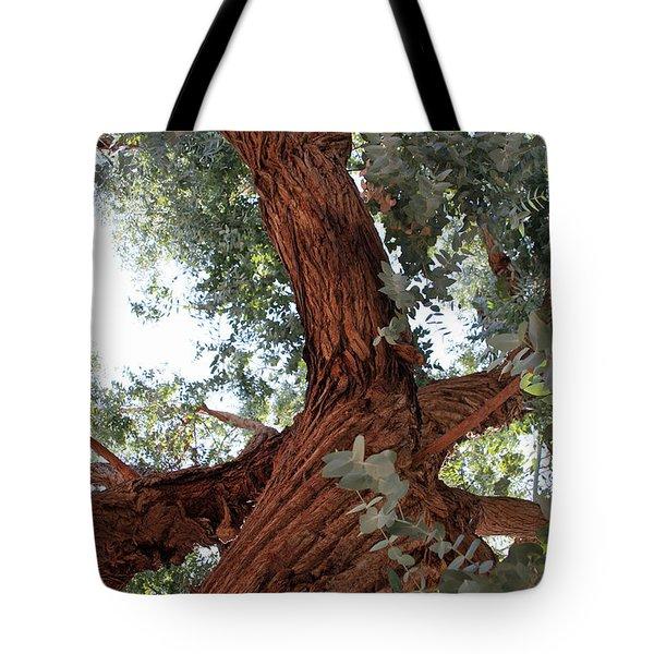 White Eucalyptus Tree Tote Bag