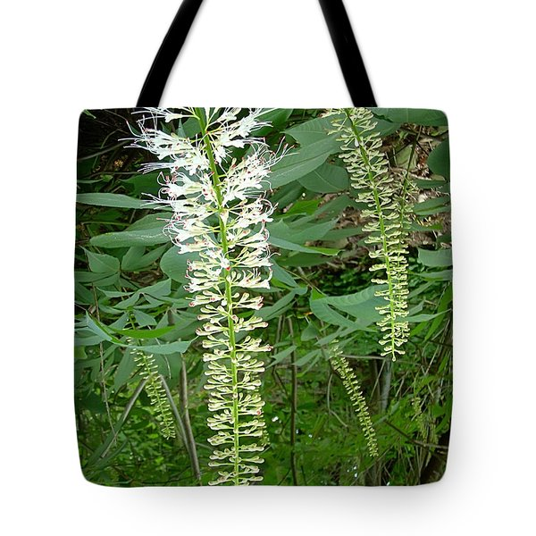 White Fern Tote Bag by Aimee L Maher Photography and Art Visit ALMGallerydotcom