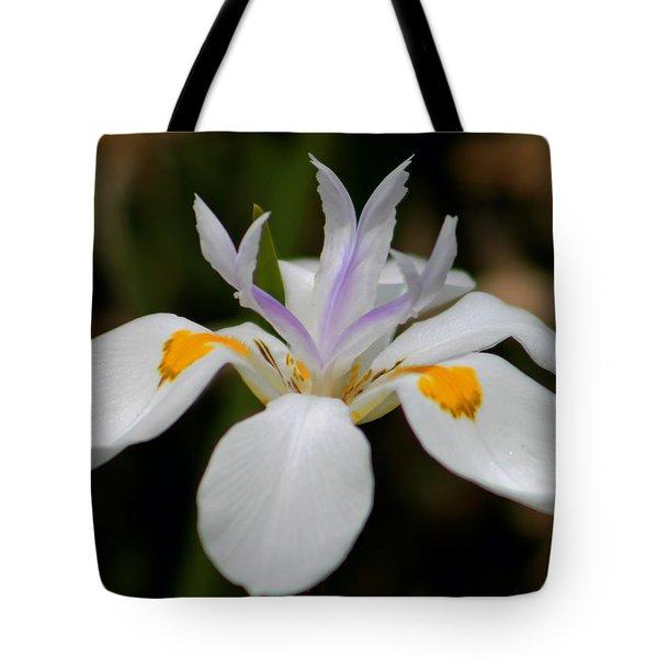 White Flower Tote Bag by Pamela Walton
