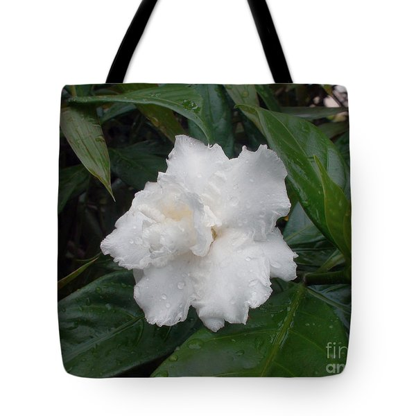 Tote Bag featuring the photograph White Flower by Sergey Lukashin
