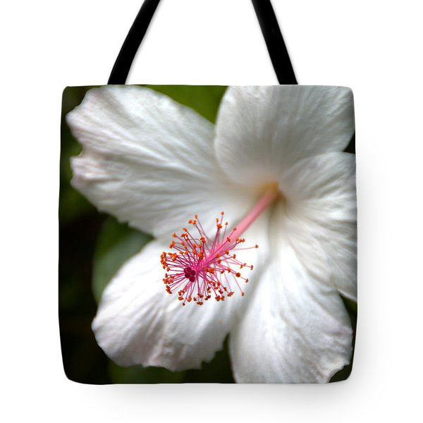 White Hibiscus Tote Bag by Brian Harig