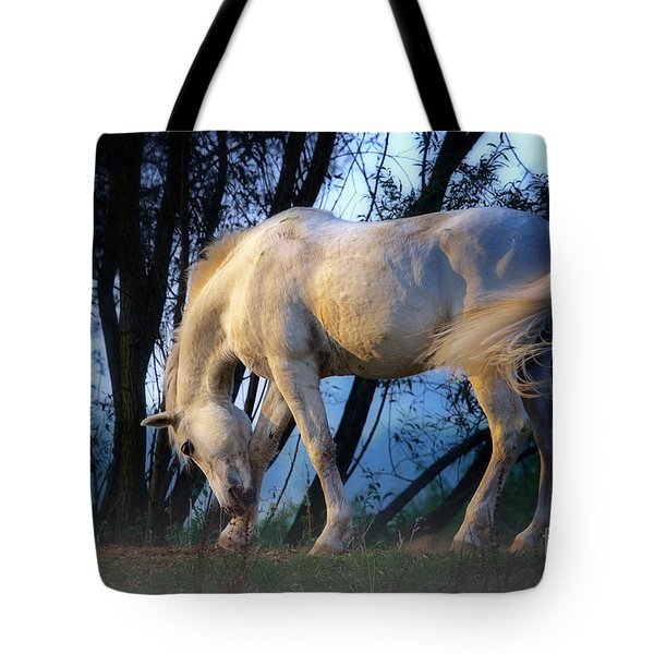 White Horse In The Early Evening Mist Tote Bag by Nick  Biemans
