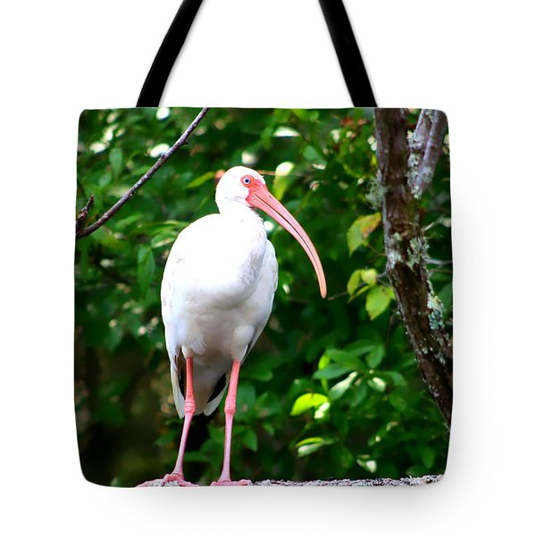 Tote Bag featuring the photograph White Ibis by Debra Forand