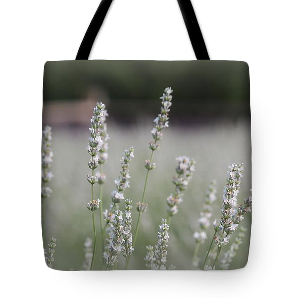 Tote Bag featuring the photograph White Lavender by Lynn Sprowl