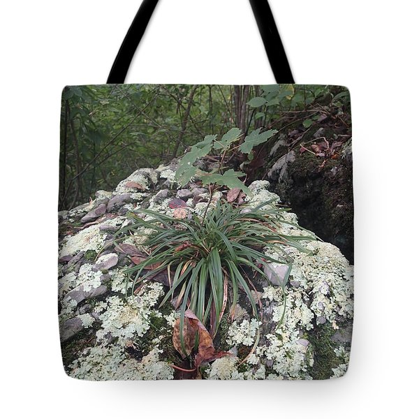 White Lichen Tote Bag