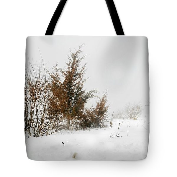White Magic Tote Bag by Diana Angstadt