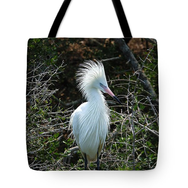 White Morph Of Reddish Egret Tote Bag