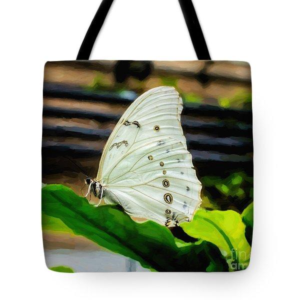 White Morpho Tote Bag by Jon Burch Photography