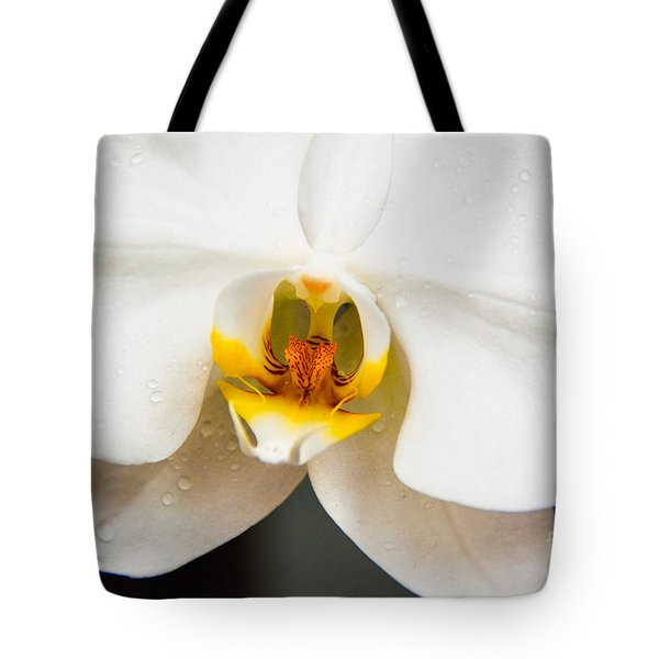 White Orchid Tote Bag by Lisa L Silva