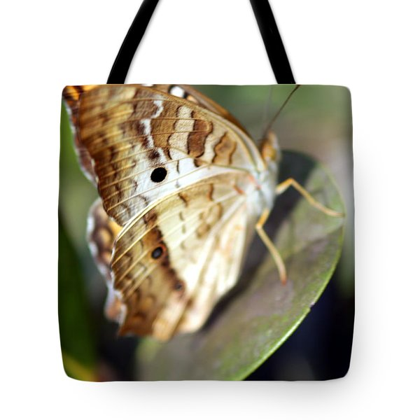 Tote Bag featuring the photograph White Peacock Butterfly by Greg Allore
