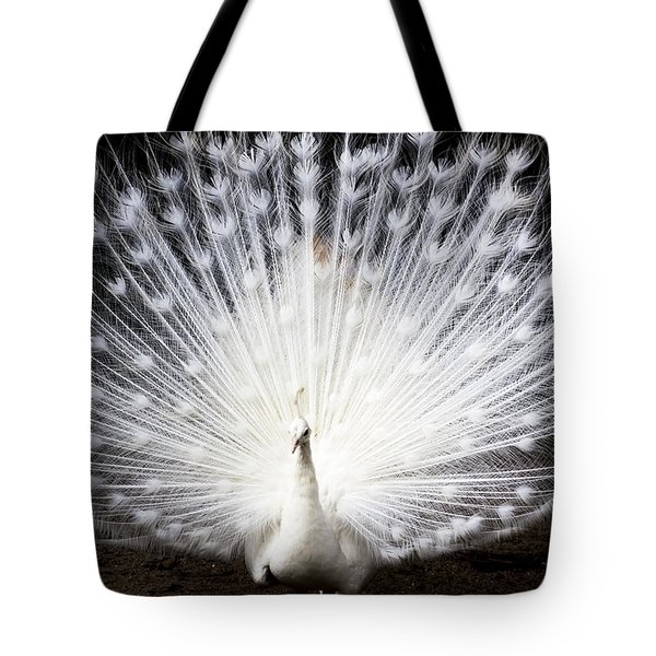 White Peacock Tote Bag by Daniel Precht