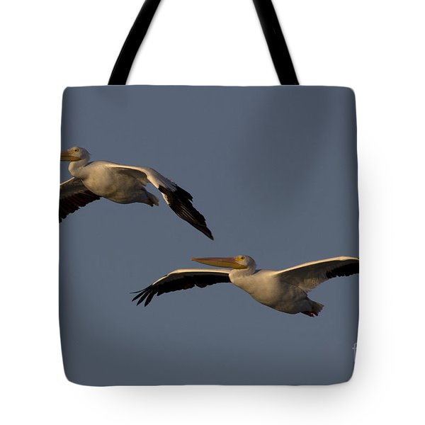 Tote Bag featuring the photograph White Pelican Photograph by Meg Rousher