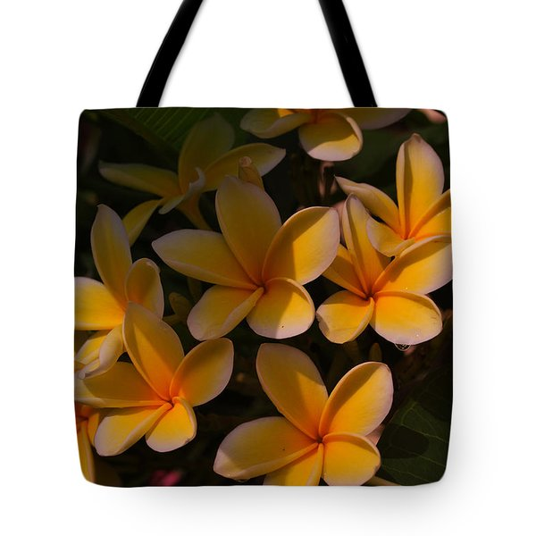 Tote Bag featuring the photograph White Plumeria by Miguel Winterpacht