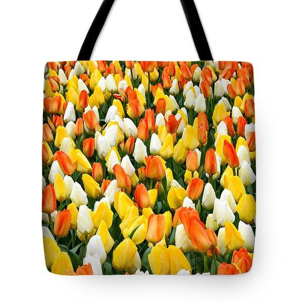 White Orange And Yellow Tulips Tote Bag by Menachem Ganon