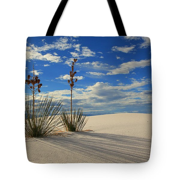 White Sands Afternoon 2 Tote Bag
