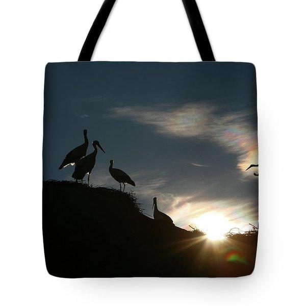 White Stork  Ciconia Ciconia Tote Bag