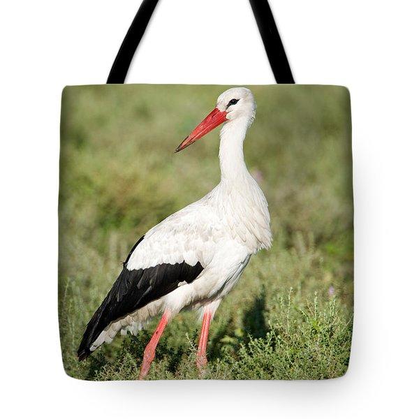 White Stork Ciconia Ciconia In A Field Tote Bag