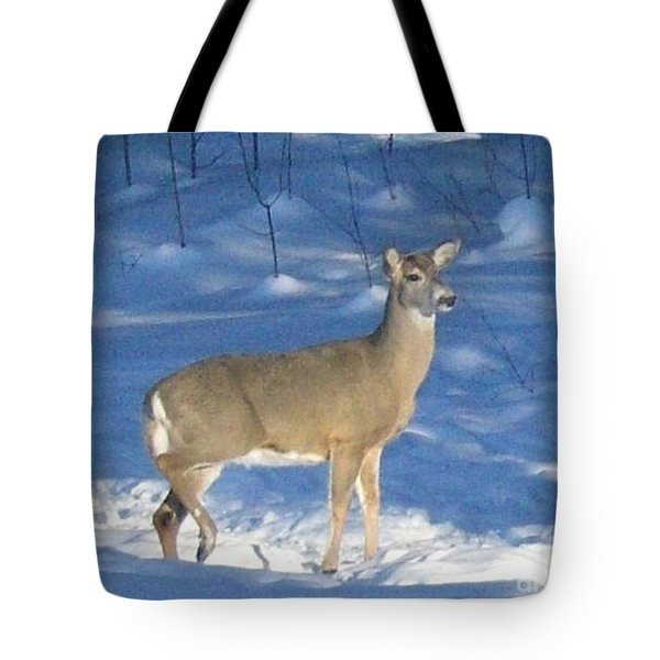 Tote Bag featuring the photograph White Tail Deer by Brenda Brown