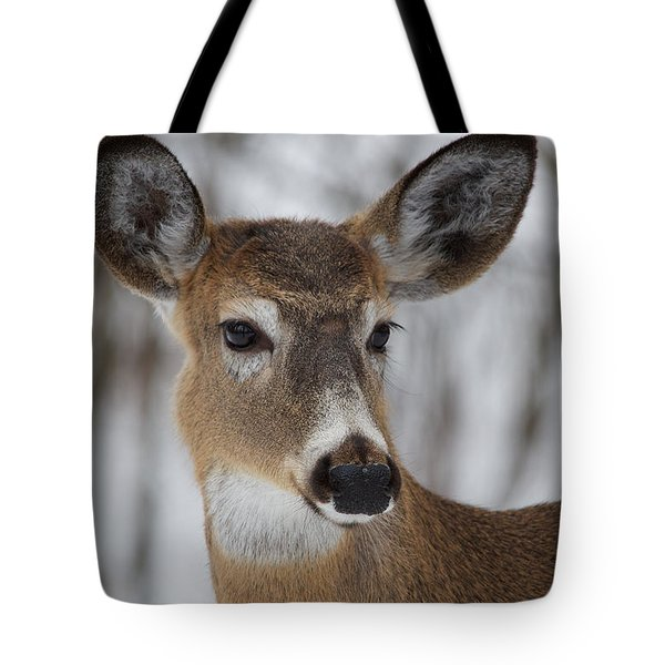 Tote Bag featuring the photograph White-tailed Deer At Old Quarry Trail by Nature and Wildlife Photography