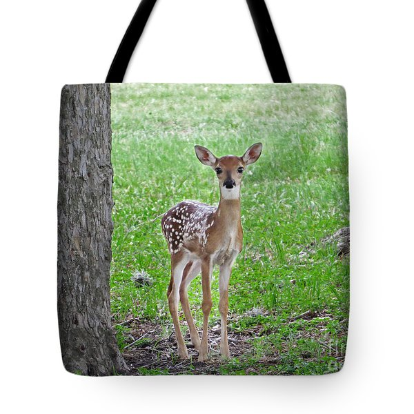 White-tailed Fawn - Face Of Innocence Tote Bag