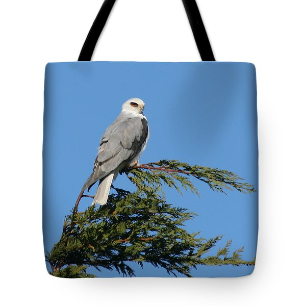 Tote Bag featuring the photograph White-tailed Kite Perching by Bob and Jan Shriner