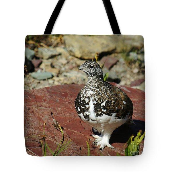 White-tailed Ptarmigan Tote Bag