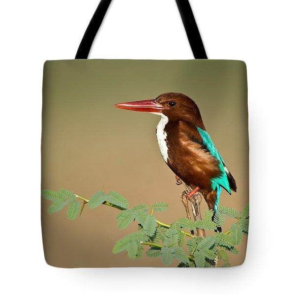 White-throated Kingfisher Halcyon Tote Bag