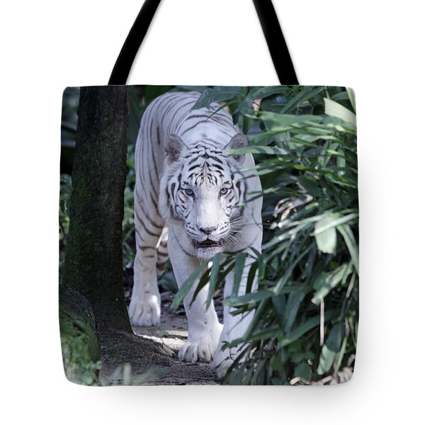 Tote Bag featuring the photograph White Tiger  by Shoal Hollingsworth