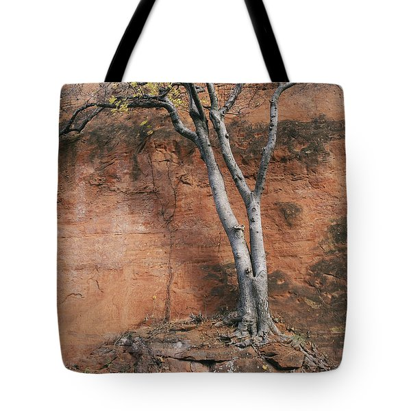White Tree And Red Rock Face Tote Bag