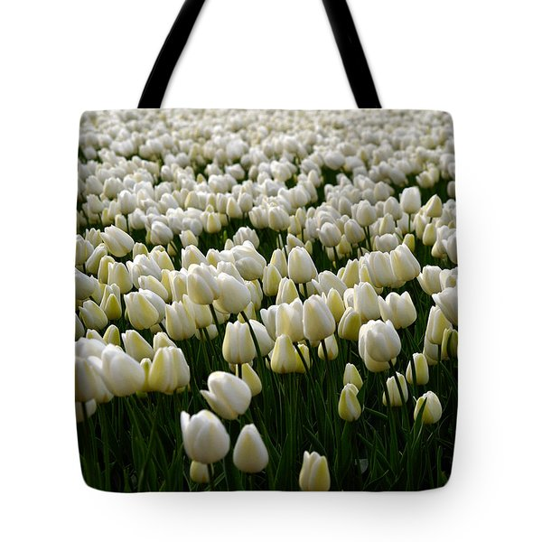 White Tulip Field  Tote Bag