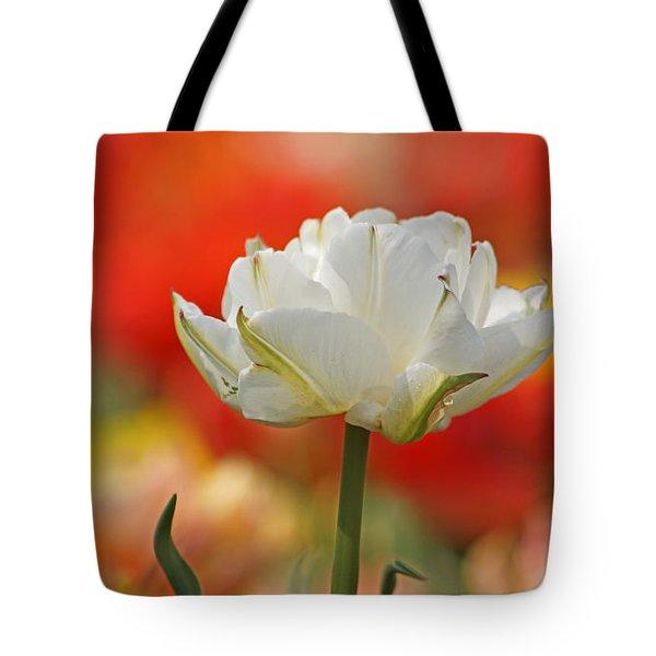 White Tulip Weisse Gefuellte Tulpe Tote Bag