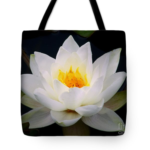 Tote Bag featuring the photograph White Water Lily by Nina Ficur Feenan