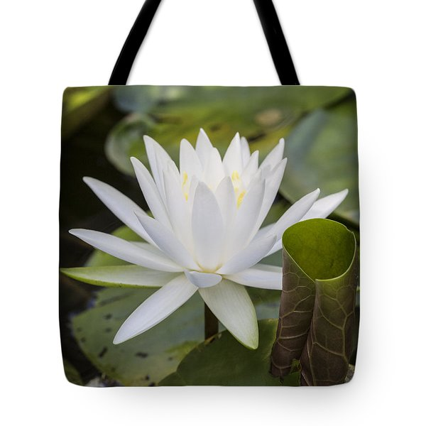 White Water Lily With Curiously Scrolled Leaf Tote Bag