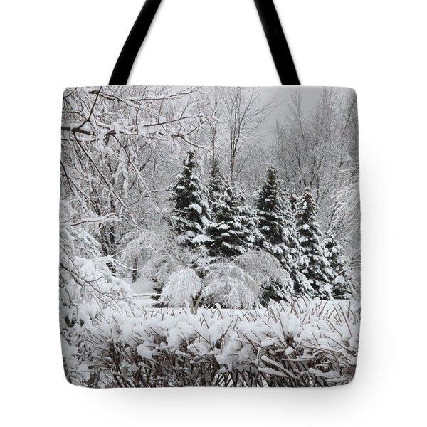 White Winter Day Tote Bag