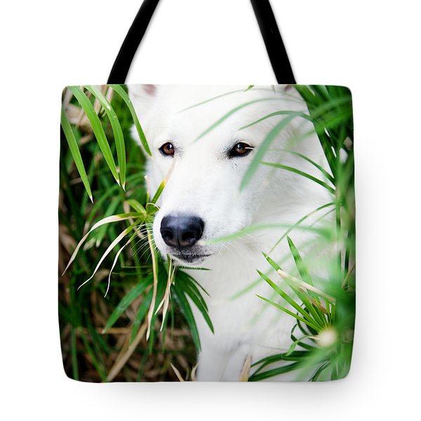 Tote Bag featuring the photograph White Wolf by Erika Weber