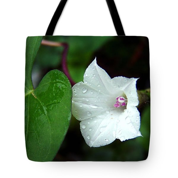 Tote Bag featuring the photograph Wild Whitestar Morning Glory by William Tanneberger