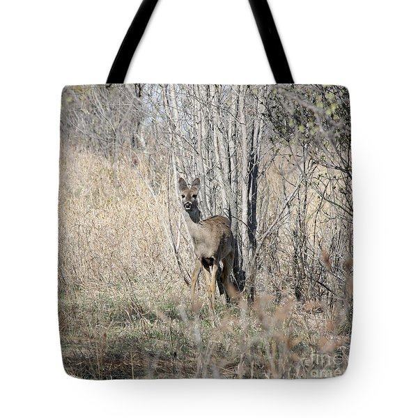 Whitetail Undercover Tote Bag by Lori Tordsen