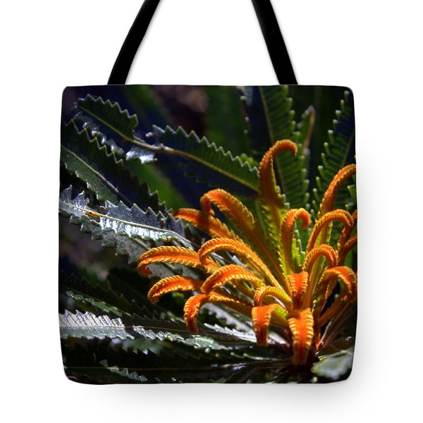 Tote Bag featuring the photograph Who Am I by Miroslava Jurcik